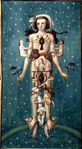 Man-as-Zodiac-Les-Calendrier-Des-Bergers